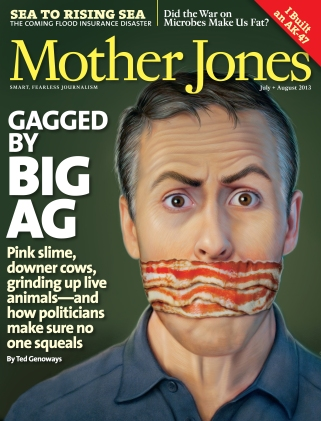 Mother Jones July/August 2013 Issue
