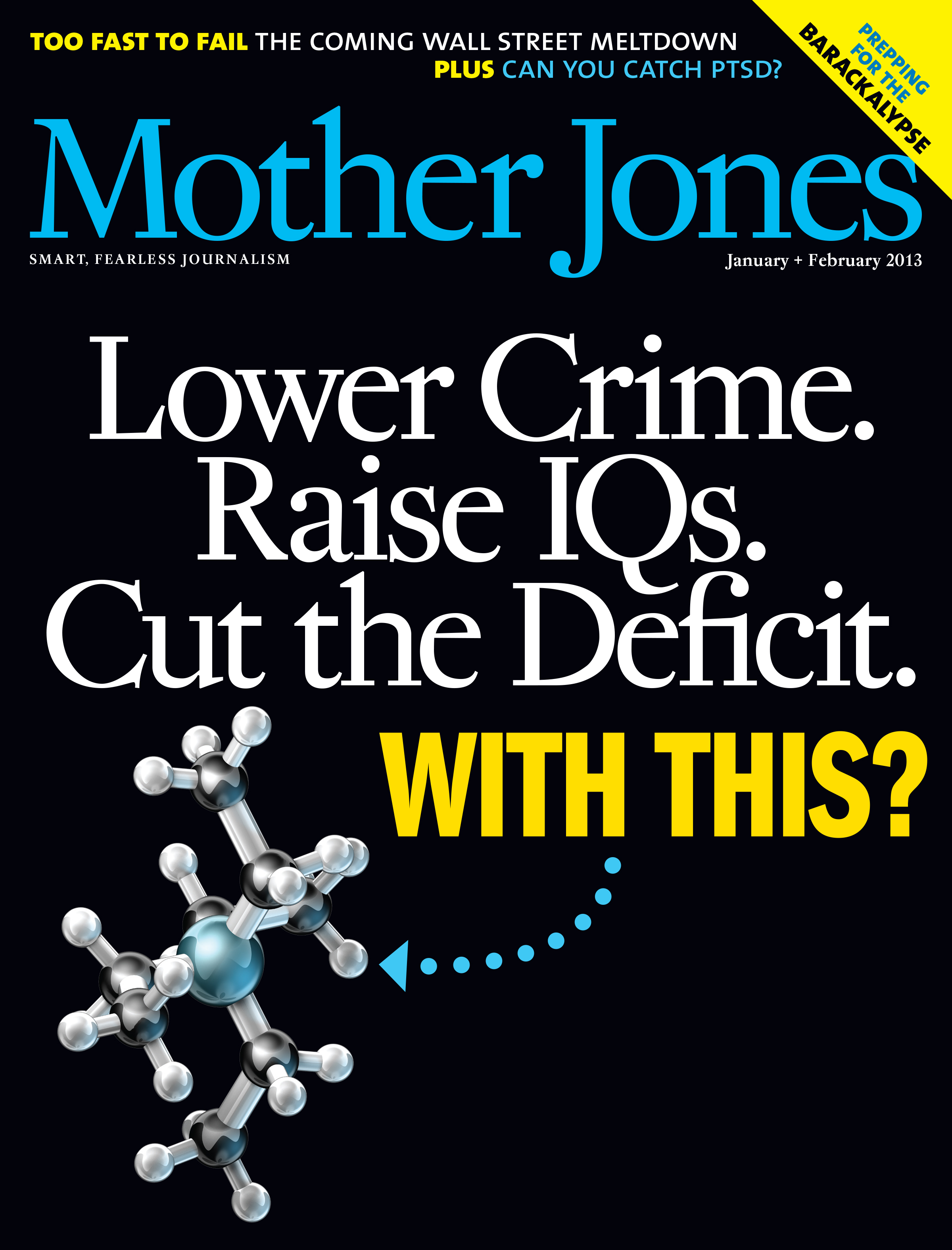 Mother Jones Magazine Cover : January + February 2013
