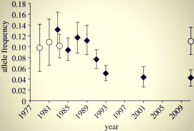 Genetic change for earlier migration timing in a pink salmon population: Ryan P. Kovach, et al. Proceedings of the Royal Society B. DOI:10.1098/rspb.2012.1158