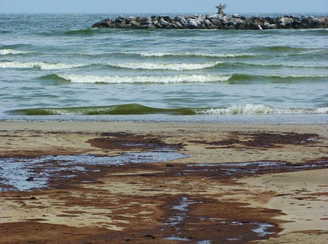 Oile beach, Lousiana, 2010: © Julia Whitty