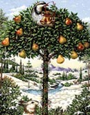 partridge-pear-tree.jpg